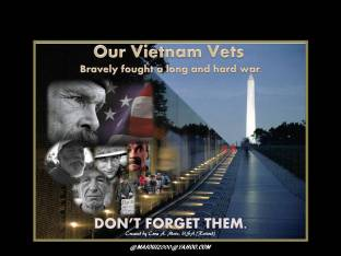 HONORING OUR VIETNAM VETS