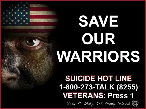 SAVE OUR WARRIORS