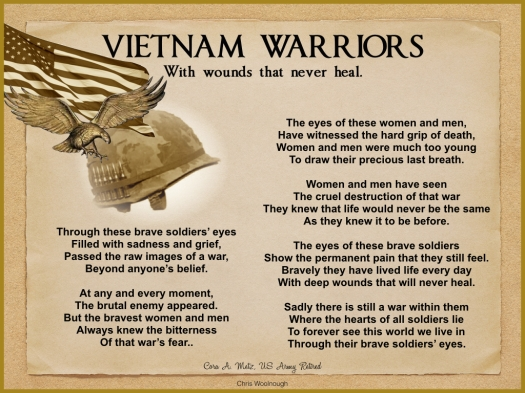 VIETNAM SOLDIERS' EYES.003