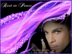 prince 3.001