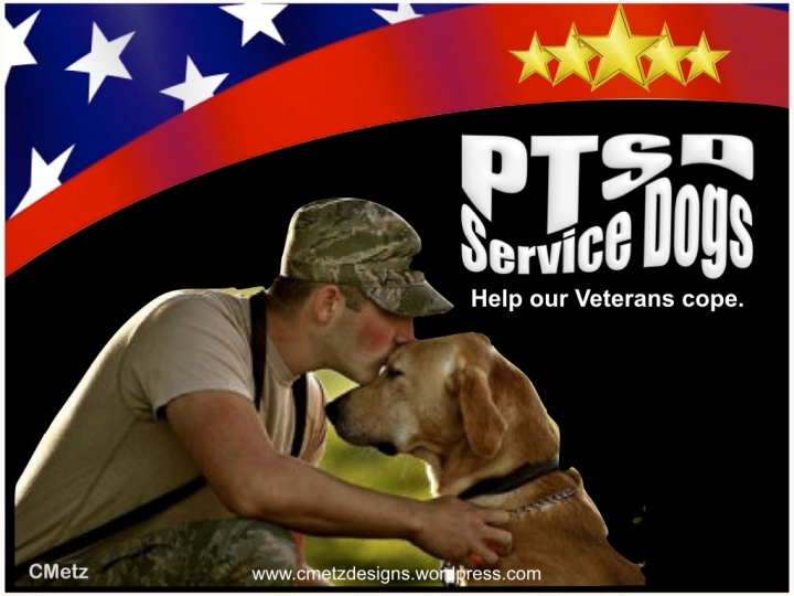 VETS COPING WITH PTSD_001