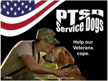 VETS COPING WITH PTSD_002