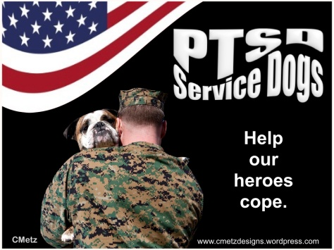 VETS COPING WITH PTSD_003