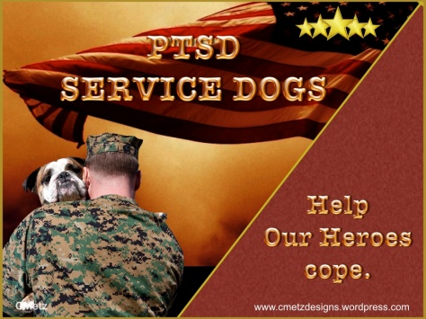 VETS COPING WITH PTSD_005