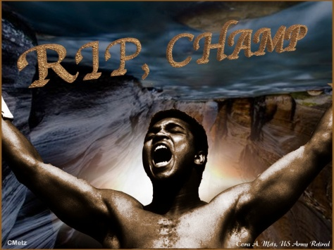 RIP, CHAMP.001